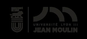 UDL-Lyon3_WEB